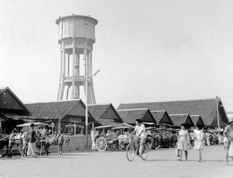 Kelahiran Kabupaten Jember dan Lika-Liku Sejarahnya