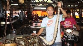 Pasar Tomohon, Pasar untuk Pengunjung Bernyali Besar