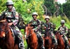 Pasukan Militer Berkaki Empat dari Indonesia, Satu-satunya di Asia Tenggara