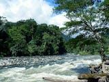 Gambar sampul Penghuni Cantik Taman Nasional Gunung Leuser