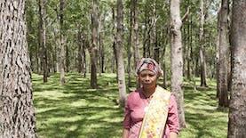 Perempuan Anak Petani Asal Timor Raih Penghargaan Goldmans Prize