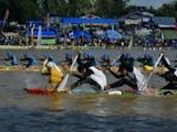 Gambar sampul Yuk ikutan Pacu Jalur! Salah satu Olahraga Tradisional Indonesia