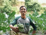 Gambar sampul Bangkit dari Keterpurukan, Amid Bangkitkan Desa Tani