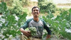Bangkit dari Keterpurukan, Amid Bangkitkan Desa Tani