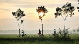 Indonesian Tempe Movement: Kita Adalah Bangsa Tempe, dan Kita Bangga.