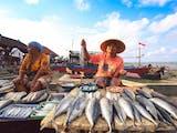 Ekspor Indonesia Justru Meningkat Saat Pandemi, 3 Sektor Ini Juaranya