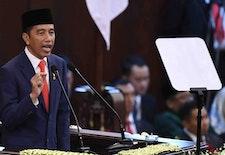 Titipan Harapan Golongan Hutan Pada Jokowi di Periode Kedua Kepemimpinannya