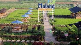 Liburan Edukatif dan Berteman Alam di Desa Pujon Kidul