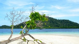 Habiskan Waktu Libur Di Pulau Pahawang, Surga Bagi Pencinta Snorkeling
