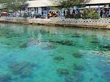 Gambar sampul Pulau Pramuka Wisata Kepulauan Seribu