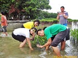 Gambar sampul Wisata Ke Pulau Pramuka