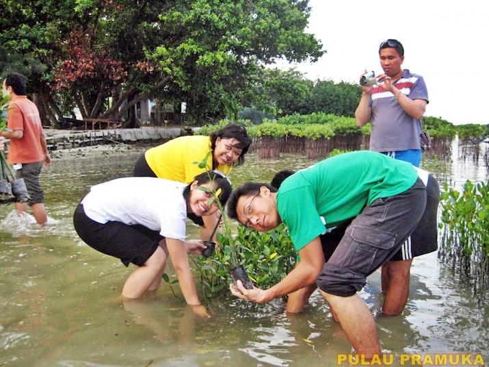 Wisata Ke Pulau Pramuka