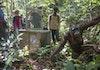 [Foto] Satu Lagi Orangutan Kembali Ke Alam