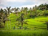 Gambar sampul Desa Tete Batu Lombok Wakili Indonesia dalam Kompetisi Internasional