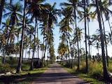Gambar sampul Flores Itu Bukan Hanya Pulau Komodo dan Danau Kelimutu