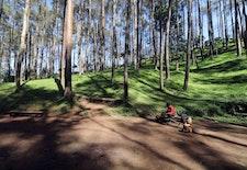 Bandung, Upayakan Perluasan Ruang Terbuka Hijau