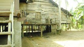 Pesona Suku Talang Mamak: Cerita Perjalanan