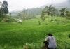 Jelajah Hutan Desa, Uji Nyali dengan Fun Trail