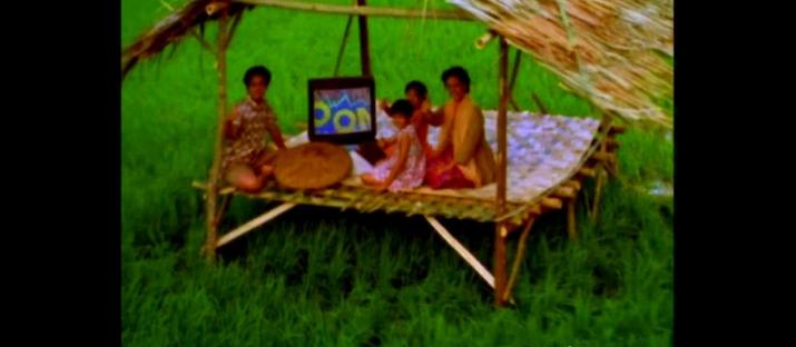 """Iklan Nonton TV di Tengah Sawah akan Jadi Kenyataan Lewat """"Listrik Padi"""" Karya Mahasiswa UB"""