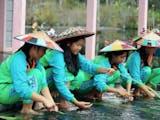 Gambar sampul Jaga dan Lestarikan Kearifan Lokal Kain Doyo