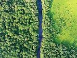 Gambar sampul Meski Kerja Sama REDD+ dengan Norwegia Berakhir, Indonesia Tetap Konsisten Lindungi Hutan