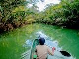 Gambar sampul Mengenal Kembali Taman Nasional Ujung Kulon yang Resmi Dibuka untuk Wisata