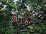 Gambar sampul Ngayau, Tradisi Masa Lalu Suku Dayak yang Dikenal Sebagai Pemburu Kepala