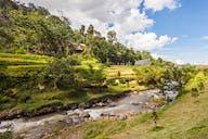 Menyingkap Misteri Kampung Janda di Bogor