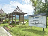 Gambar sampul Aktivitas Wisata di Desa Karangrejo Magelang, dari Menanam Padi hingga Keliling Naik VW