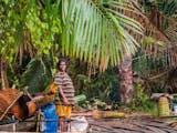 Gambar sampul Sagu, Alternatif Pangan Lokal dari Indonesia Timur