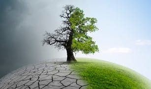 Memahami Makna Dasar Perubahan Iklim dan Upaya Menghadapinya