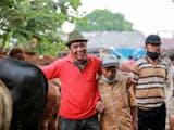 Gambar sampul Marosok, Tradisi Tawar Menawar Ternak yang Gunakan Bahasa Isyarat di Minangkabau