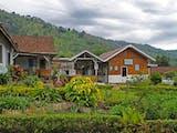 Gambar sampul Berwisata ke Desa Jampit yang Menenangkan di Kaki Gunung Ijen