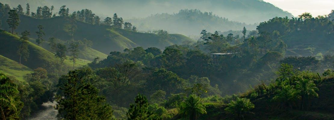 Gambar sampul Kemerdekaan Indonesia dan Upaya Memerdekakan Hutan