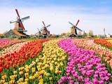 Gambar sampul Intip Kampung Amsterdam, Jejak-Jejak Peninggalan Belanda di Garut