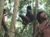 Gambar sampul Sokola Institute: Lembaga Penyedia Pendidikan bagi Masyarakat Adat Indonesia