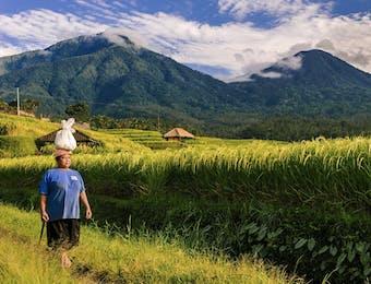 Empat Desa Ini Berhasil Jadi Daerah Wisata Berkelanjutan