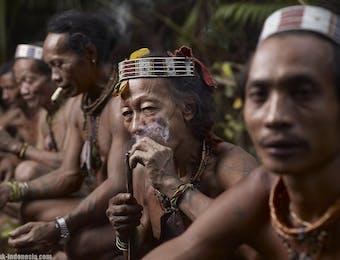 Suku Punan, Suku Dayak Pedalaman Penjaga Hutan Rimba