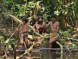 Gambar sampul Sakai, Suku Nomaden Asal Riau yang Bergantung Pada Hutan