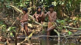 Sakai, Suku Nomaden Asal Riau yang Bergantung Pada Hutan