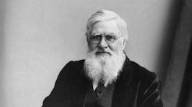 100 Tahun Tangkoko : Kisah Wallace di Tangkoko