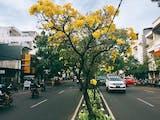 Surabaya, Kota 1000 Penghargaan?