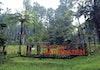 Taman Flora of Java diresmikan di Banyumas