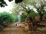 Kampung Adat Tenganan, Lorong Waktu Kembali ke Bali Kuno