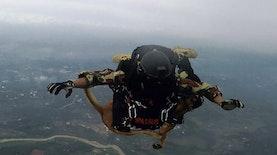 Terjun Bebas Kopassus Bersama Satwa. Pecahkan MURI Pada HUT TNI ke-72
