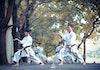Indonesia Borong Medali di Ajang Karate Asia-Pasifik