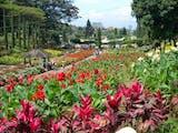 Gambar sampul 5 Tempat Wisata Terpopuler Di Kota Tomohon