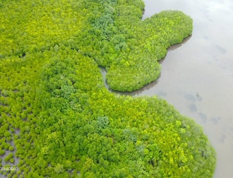 Ekosistem Batang Toru, Sumber Kehidupan Tiga Kabupaten