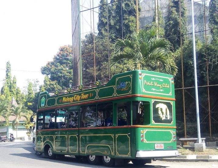 Beragam Bus Wisata yang Memikat Mata
