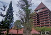 Universitas Indonesia Hadirkan Prodi Pariwisata